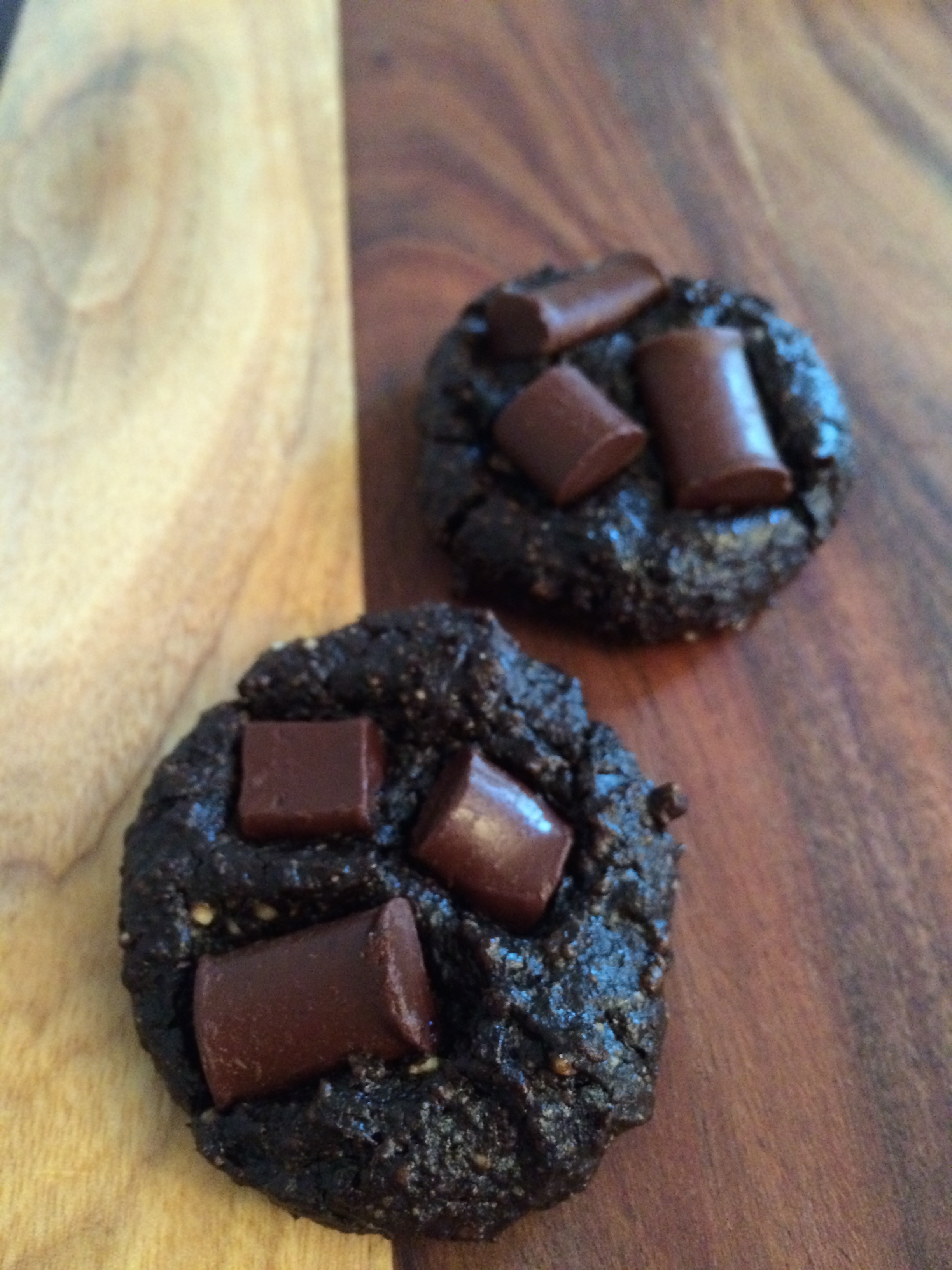 Flourless Chewy Chocolate Cookies (vegan, GF, Paleo)